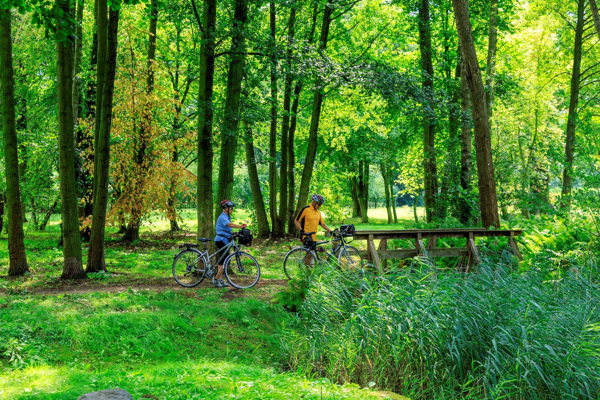 Fahrradfahrer im Kur- und Sagenpark Burg (Spreewald)